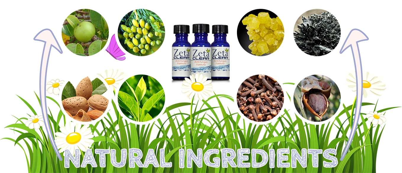 ZetaClear ingredients